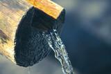 Woda wypływająca z drewnianego pnia