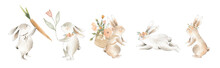Watercolor Spring Easter Bunny And Floral Elements For Children And Weddings Or Baby Showers