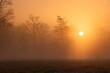 canvas print picture - Durch Saharastaub gelb gefärbter Sonnenaufgang
