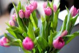 Fototapeta Kwiaty - Różowe tulipany kwiaty