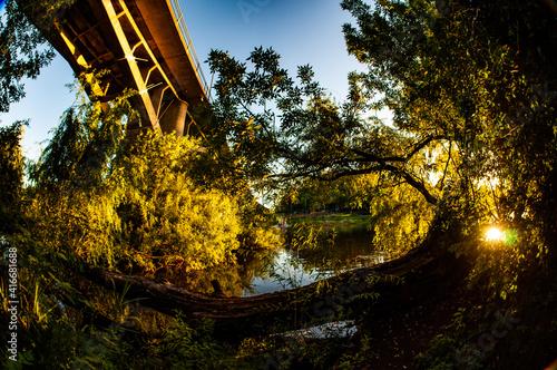 Puente y otroño en el rio a la tarde