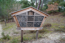 Natural Wild Bug Hotel Wood Insect House Ladybird Wooden Bee Home In Ecological Gardening Concept