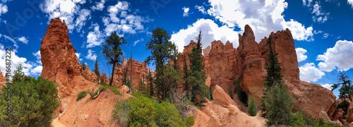Bryce Canyon National Park in summer season - Panoramic view © jovannig