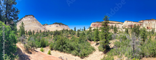 Zion National Park in summer season - Panoramic view © jovannig