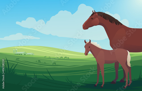 Vector illustration landscape with horse, mare and little baby foal on pasture, with barn and herd of horses grazing in the background Fotobehang