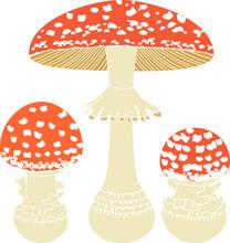 Fly Agaric (Amanita Muscaria) Mushrooms Isolated On White Background
