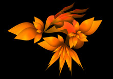 Thorn Flowers And Leaf Form Fractal Design
