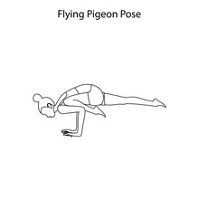 Flying Pigeon Pose Yoga Workout Outline. Healthy Lifestyle Vector Illustration