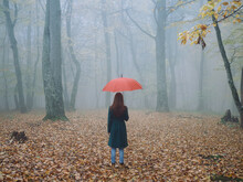Woman With Red Umbrella In Autumn Fog Yellow Leaves Fresh Air