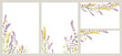 Birthday or Wedding invitation cards. Vector design element, wreaths of lavender, chamomile and wheat ears, medicinal herbs, calligraphy lettering.