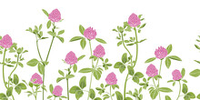 .Hand-drawn Red Clover On A White Background Border Seamless Pattern. Vector Illustration Of A Melliferous Flower. Floral Background. Bee Garden.