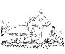Linear Drawing Of Mushrooms, Flowers And Leaves, Forest Edge With Plants. Suitable For Presentations, Websites, Books On Biology, Children's Coloring.Drawn By A Black Pen On A White Background, Vector