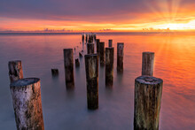 Old Naples, Florida Pier Pilings In Gulf Of Mexico With Wooden Jetty, Many Birds, Pelicans And Cormorants, Perched, Flying By Ocean Waves. Coastal Dreams And Travel Concept.