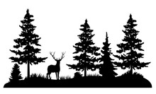 Vector Deer In A Pine Forest