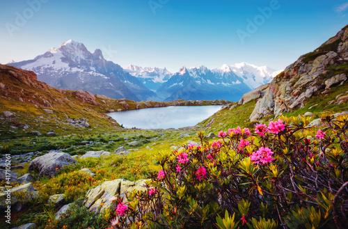 Fotografie, Obraz Great Mont Blanc glacier with Lac Blanc