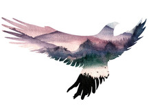 Eagle Bird Silhouette On Forest Background. Insulated Profile. Watercolor Illustration. Design. Portrait Of An Animal. Wildlife. Double Multiple Exposure In Painting