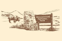 Sketch Of The Yellowstone National Park Sign, Bison And Nature In The Background, USA, Hand-drawn.