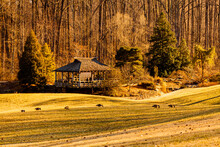 A Sunny Afternoon Scene Inside Brookside Gardens Within The Wheaton Regional Park Of Maryland With Large Grassland, Tall Trees In The Woods And A Gazebo. Trees Have No Leaves. A Versatile Image.
