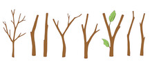 Set Of Tree Branches, Bare Twigs And Branches With Leaves. Wooden Sticks. Vector