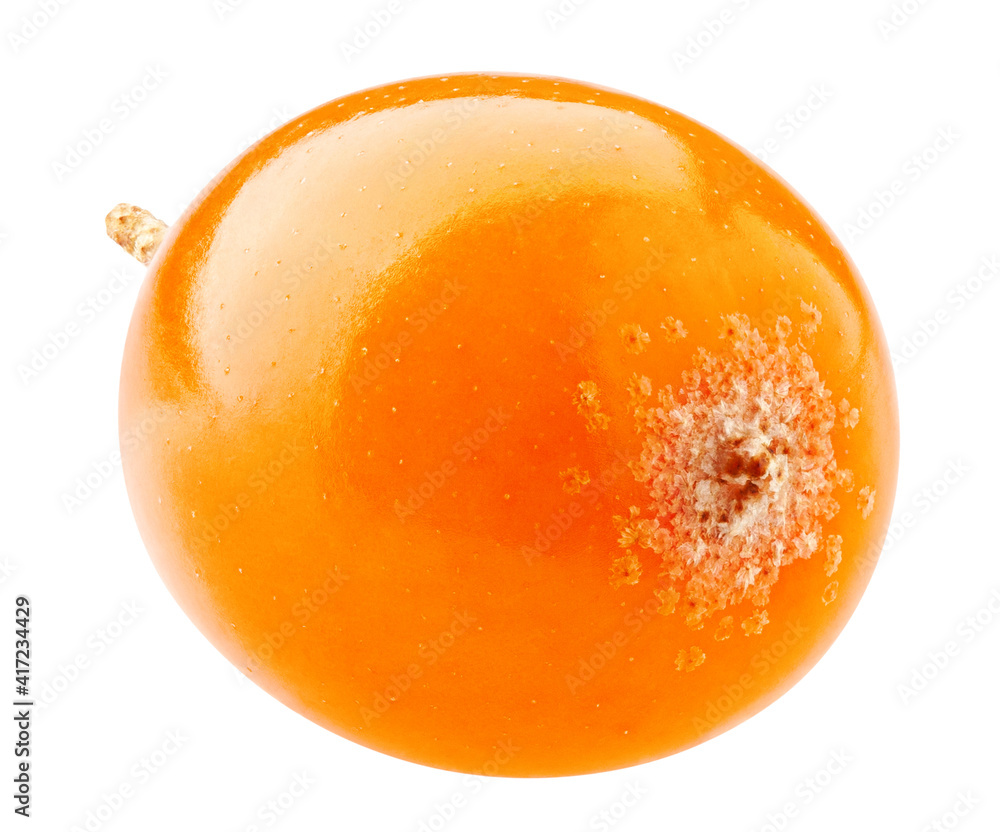 Fototapeta Sea buckthorn isolated on white background, clipping path, full depth of field