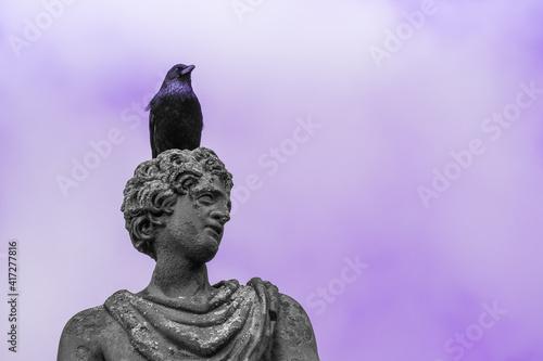 Fototapeta premium Black bird sitting on top of old sculpture. Raven. Purple background.