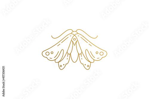 Fotomural Wild moth silhouette elegant linear vector illustration.