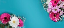 A Bouquet Of White And Pink Gerberas On A Blue Background. A Bright Festive Floral Arrangement. Background For Greeting Cards, Greetings, Invitations.
