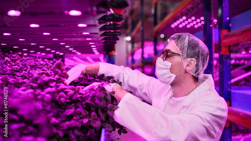 Photo Worker with face mask on aquaponic farm, sustainable business and coronavirus
