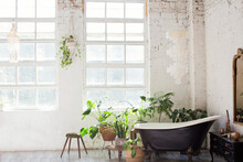 Bathroom Interior With Windows And Plants