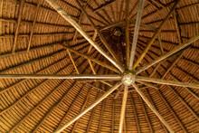Nauta, Peru. Looking Up At A Circular Plaited Palm Thatched Roof Interior.