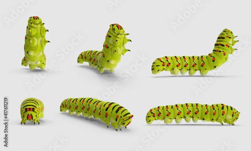 Photo green Papilio Swallowtail Caterpillar creeps standing