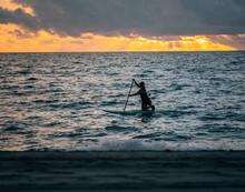 Silhouette Of A Surfer Beach Florida Usa Sunrise Nature
