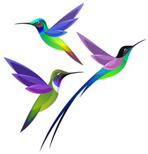 Stylized Hummingbirds In Flight