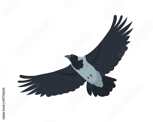 Fototapeta premium Flying Crow bird isolated on white
