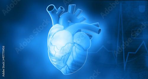 Fotografie, Obraz Human heart anatomy on blue background. 3d illustration..