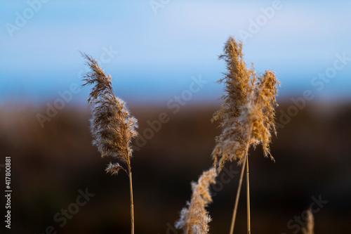 Photo paisaje