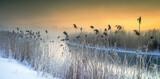 Zimowa Rzeka O Wschodzie  Słońca  - Szrony