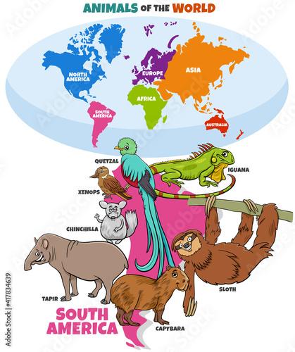 Fototapeta premium educational illustration of cartoon South American animals