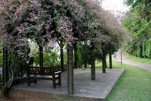 Gazebo Under The Shade Of Trees