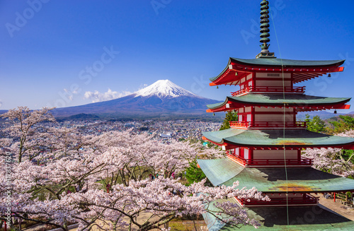 Wallpaper Mural Chureito red pagoda with sakura in foreground and mount Fuji in background, Fuji