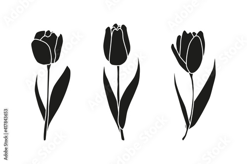 Canvas Print Beautiful hand drawn spring tulip flowers isolated on white background