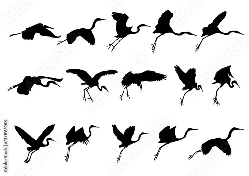 Fotomural white herons set of silhouettes of birds shadow
