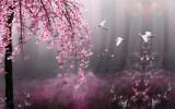 3d wall background design decoratove interior blossom in spring