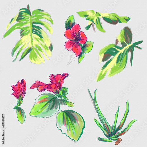 watercolor greeting card elements of palm leaves and hibiscus Poster Mural XXL