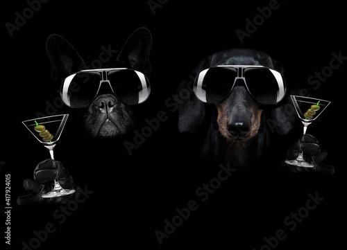 Canvas martini cocktail dog in dark black mood