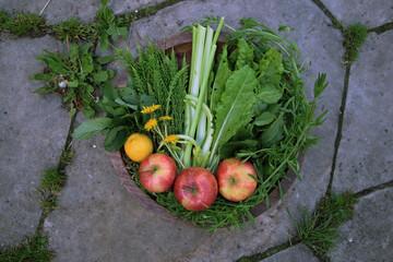 warzywa na tacy,  zdrowe nowalijki, zielony sok, mlecz, dieta, zdrowie, kwiat,