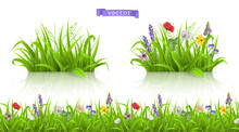 Wild Flowers, Spring Grass Seamless Pattern 3d Realistic Vector