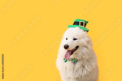 Cute dog with green hat and bowtie on color background Fototapet