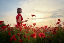 Summertime. Young Woman In Dress Walking On Red Poppy Field.