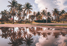 Palm Trees On The Beach Pool Reflections Beautiful Cute Vacation Florida Usa Sunset Summer Travel